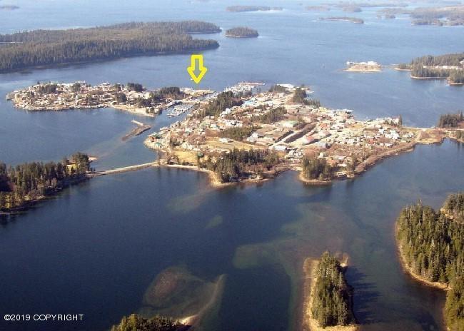 Alaskarealestatecom Real Estate Professional Detail