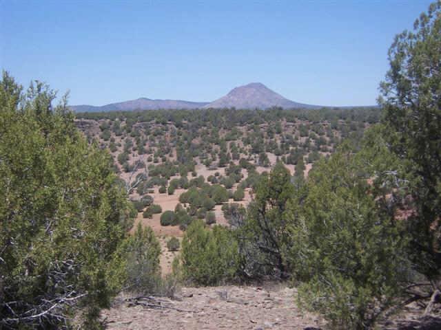 86 N Quibits Creel Trail Lot 86, Ash Fork, AZ 86320