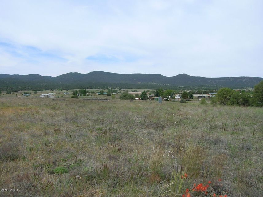 577 N GRAHAM Boulevard Lot 30, Young, AZ 85554