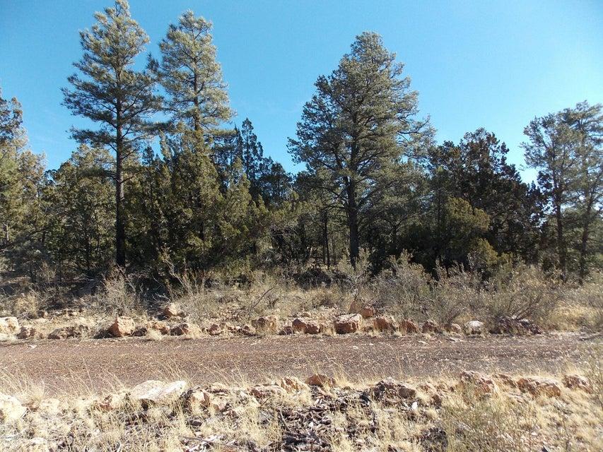 2845 MUSTANG Trail Overgaard, AZ 85933 - MLS #: 5045041
