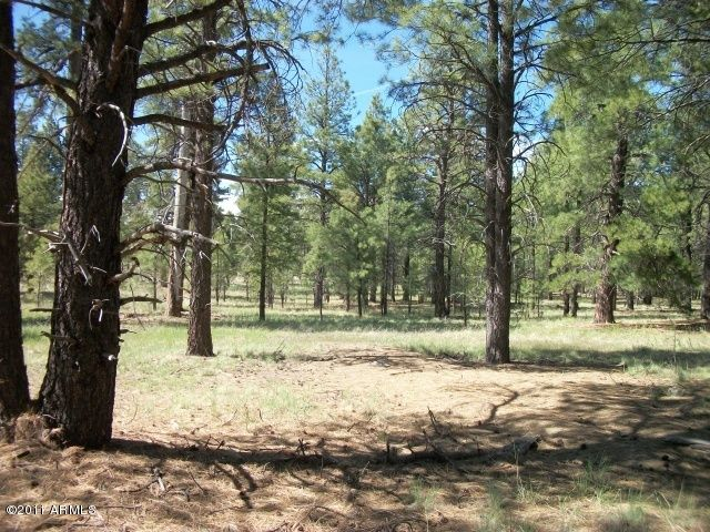 Pcl3T Coconino Forest Rd 867 --, Flagstaff, AZ 86001