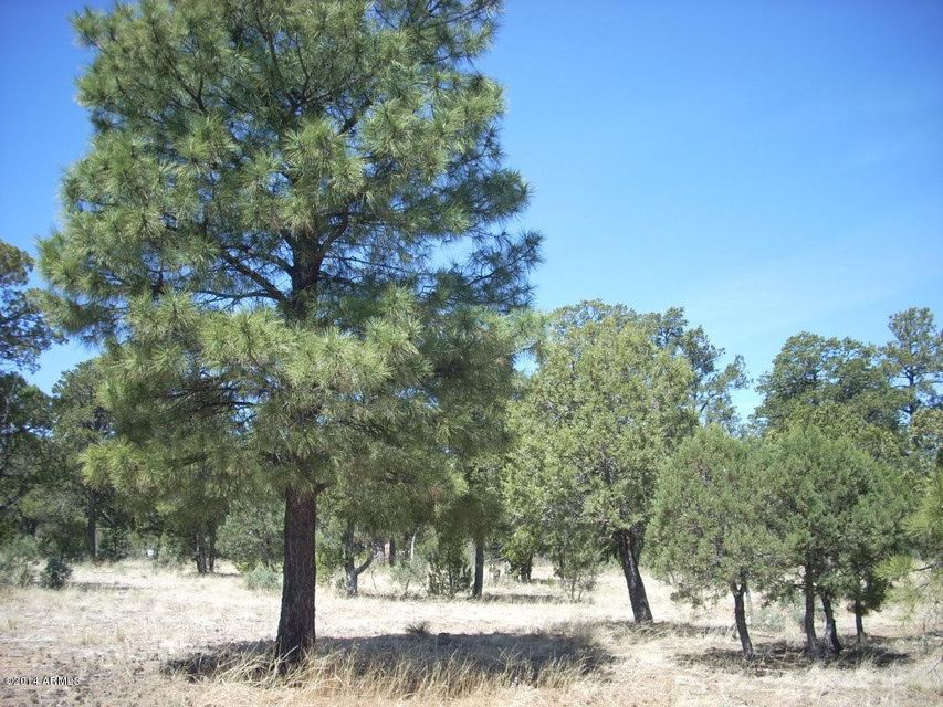 2862 BUCK CIRCLE Overgaard, AZ 85933 - MLS #: 5111817