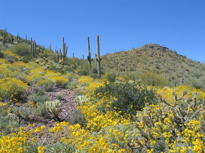 00000 E Lone Mountain Road Lot 0, Cave Creek, AZ 85331