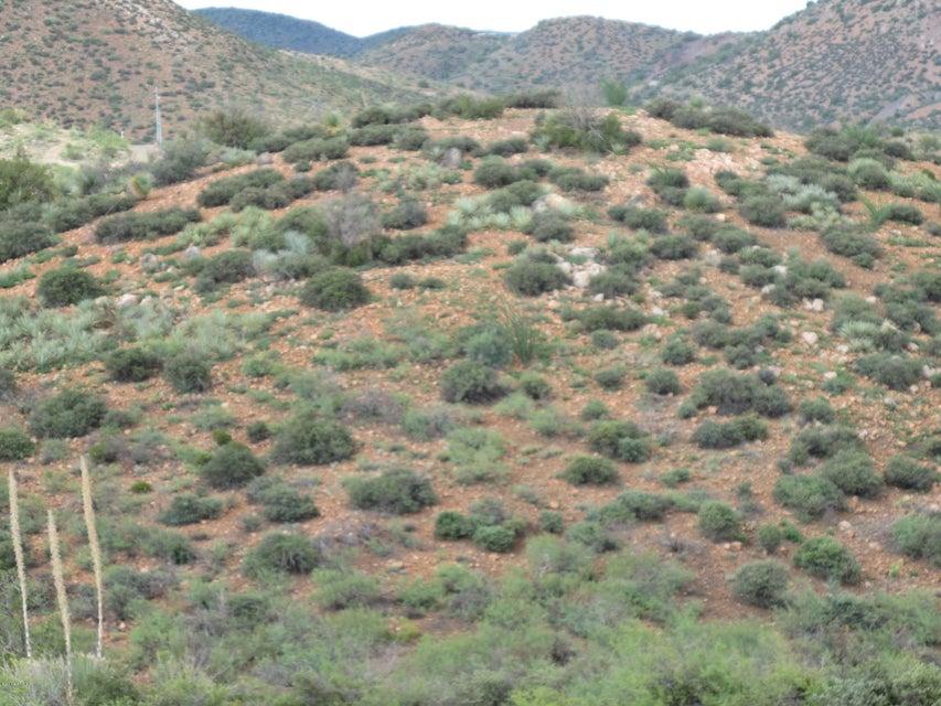 lot 143 Over Hill Road Lot 143, Globe, AZ 85502