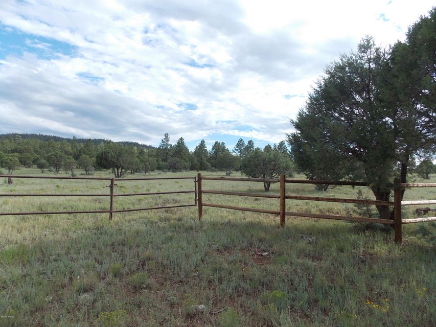 L 2 Porter Mountain Road Lakeside, AZ 85929 - MLS #: 5160605