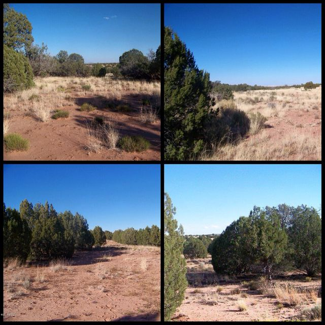 N NOLL Road Lot 4, Concho, AZ 85924