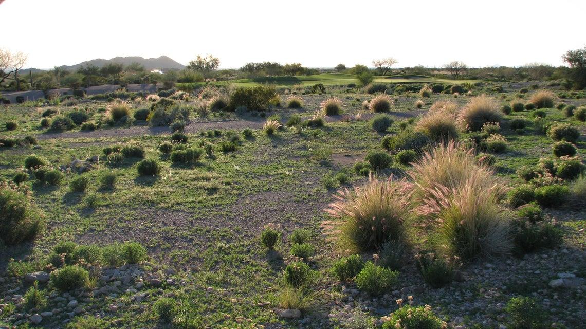 2866 S Petroglyph Trail Lot 64, Gold Canyon, AZ 85118