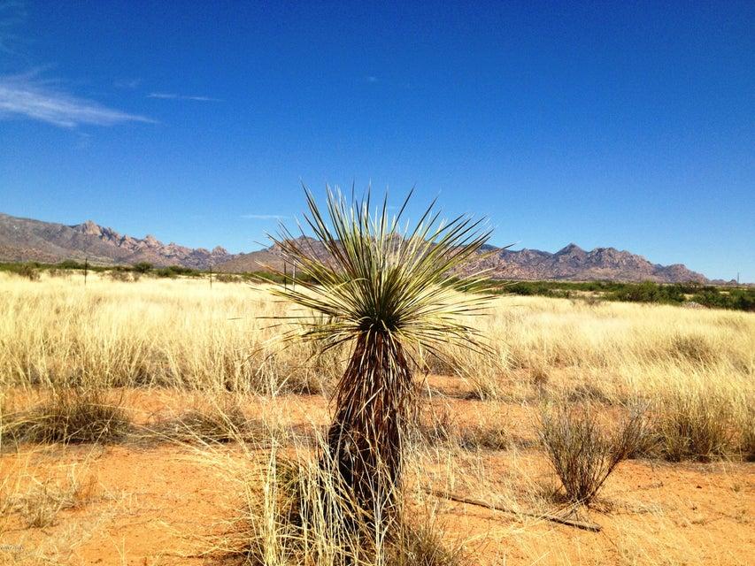 94 N TORTOISE Trail N Lot 094, Saint David, AZ 85630