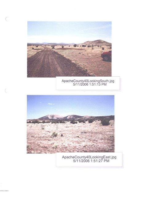 137 N Iron Pin Center Lot 6, Vernon, AZ 85940