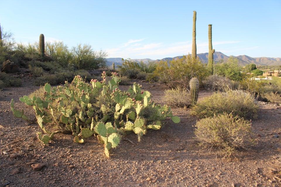 37826 N HIDDEN VALLEY Drive, Cave Creek, AZ 85331