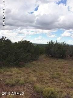 TBD Tamarron Ranch Unit 9 --, Concho, AZ 85924