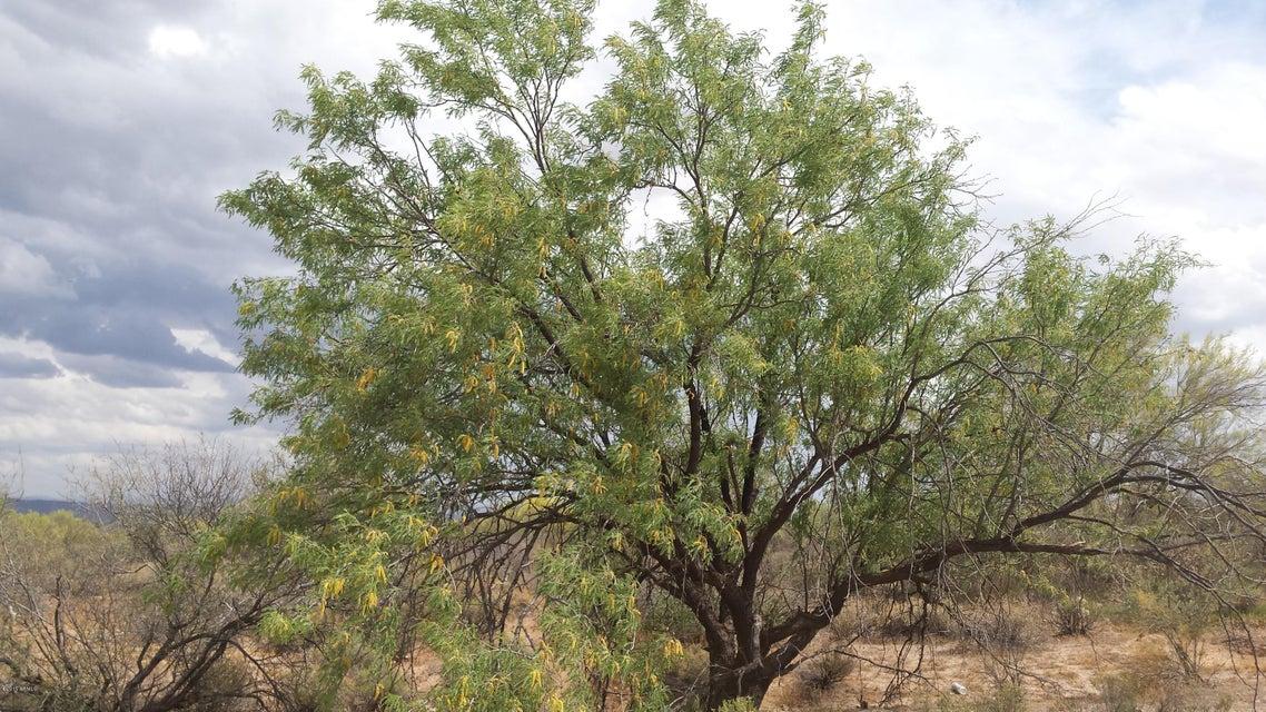 16409 E LONE TREE Trail Lot 2, Scottsdale, AZ 85262