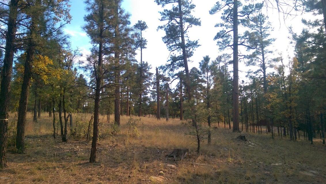 2133 N Pine Canyo Drive Lot 176, Happy Jack, AZ 86024