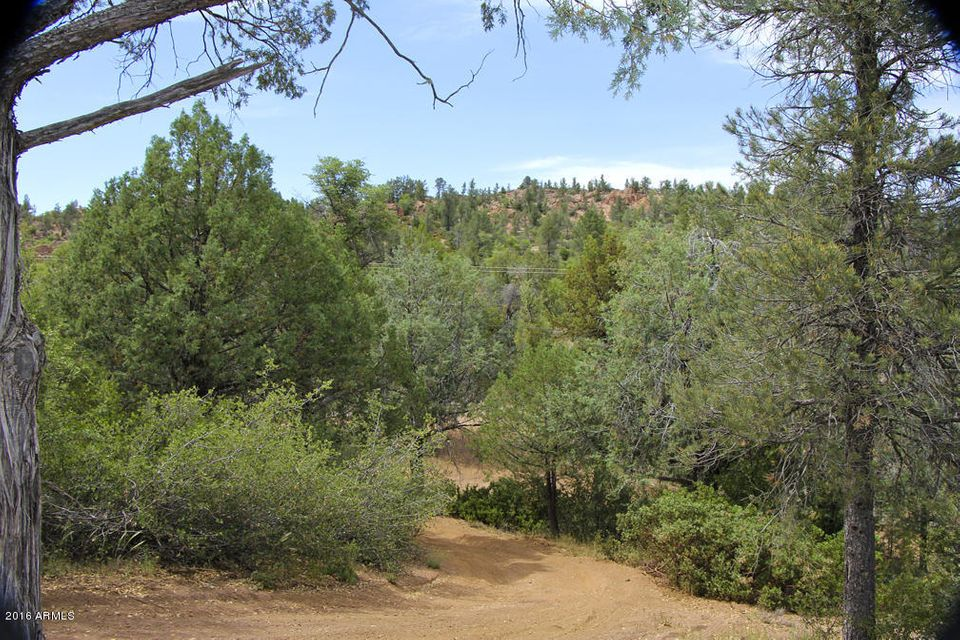 10100 E Granite Dells Road, Payson, AZ 85541
