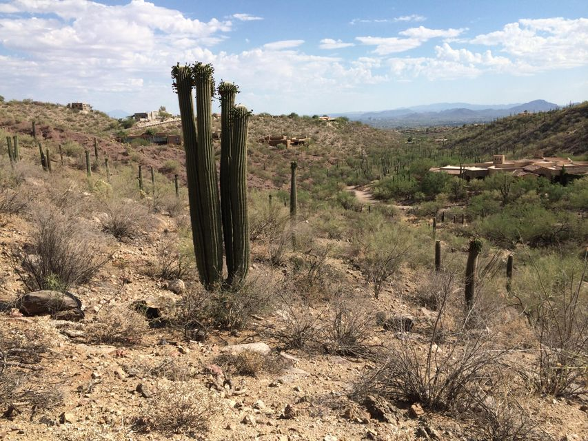 3548 E Secret Canyon Place Lot 00060, Tucson, AZ 85718