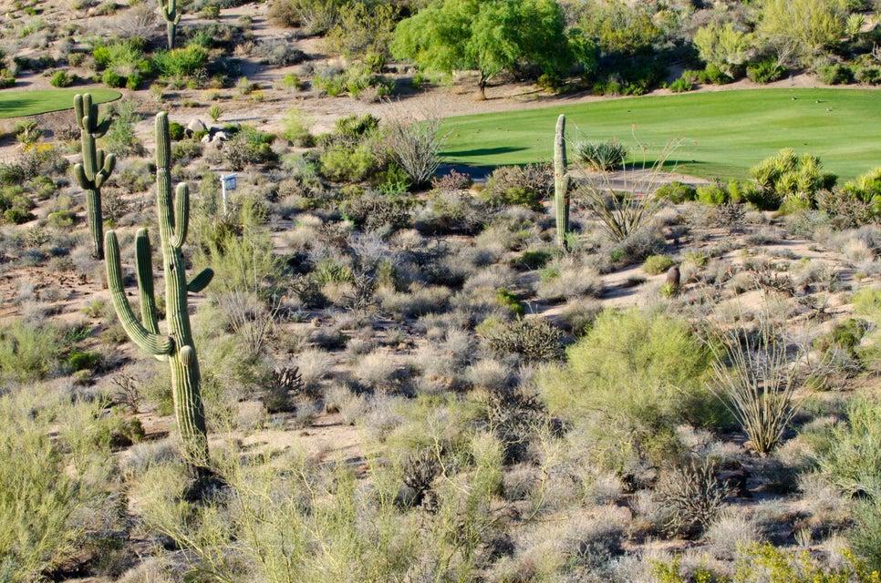 10765 E Cinder Cone Trail