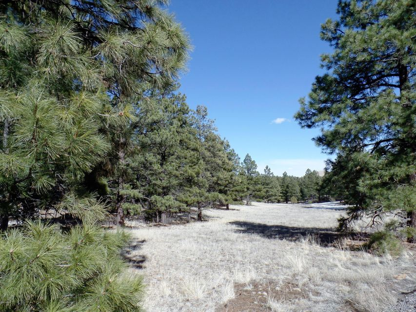 Lot 13 Red Cabin Ranch Estates Lot 13, Vernon, AZ 85940