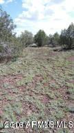 286 W RIDGEVIEW Drive Ash Fork, AZ 86320 - MLS #: 5407515