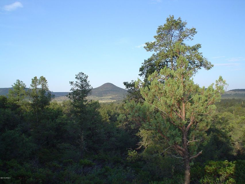474 N IKE CLARK -- Lot 4, Young, AZ 85554