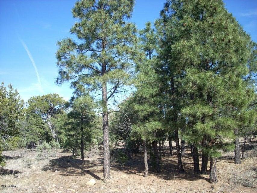 1484 LOW MOUNTAIN Trail Lot 173, Heber, AZ 85928