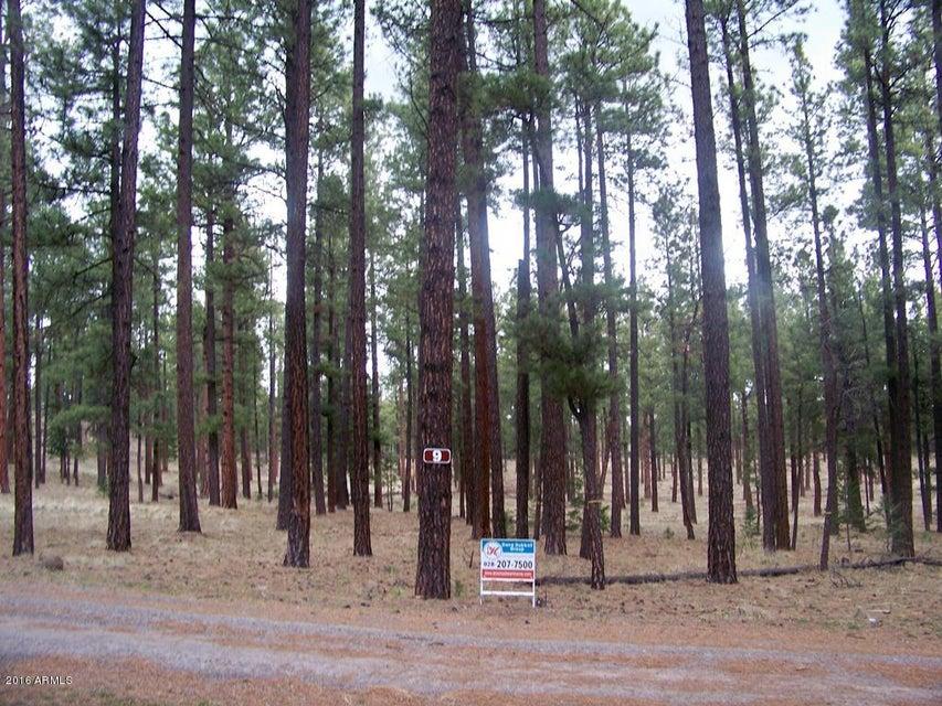 Lot 9 Greer Acres -- Lot 9, Greer, AZ 85927