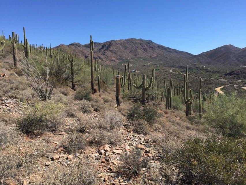 4240x N FLEMING SPRINGS Road, Cave Creek, AZ 85331