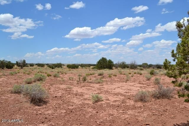 TBD N Frosty Lane (9075) Lane Lot 357-356, Concho, AZ 85924