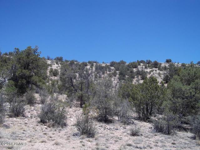 Lot 511 Sierra Verde Ranch -- Lot 511, Seligman, AZ 86337