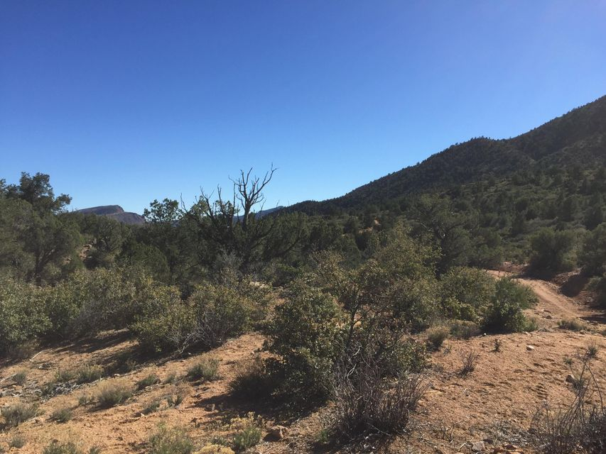 Lot 164 Blackjack Drive Lot 164, Kingman, AZ 86401