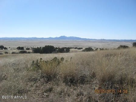 E Perkinsville Road, Chino Valley, AZ 86323