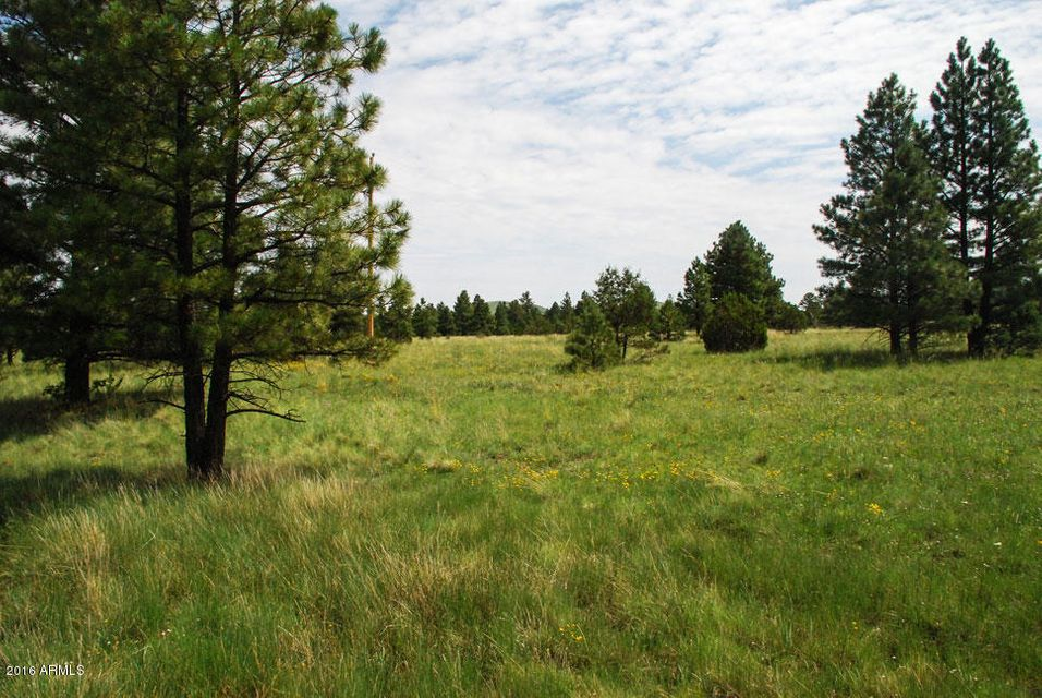 L1 Red Cabin Ranch -- Lot 1, Vernon, AZ 85940