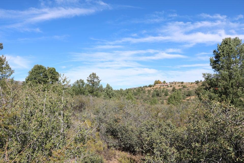 17734 S Tawny Lane Lot 33, Peeples Valley, AZ 86332