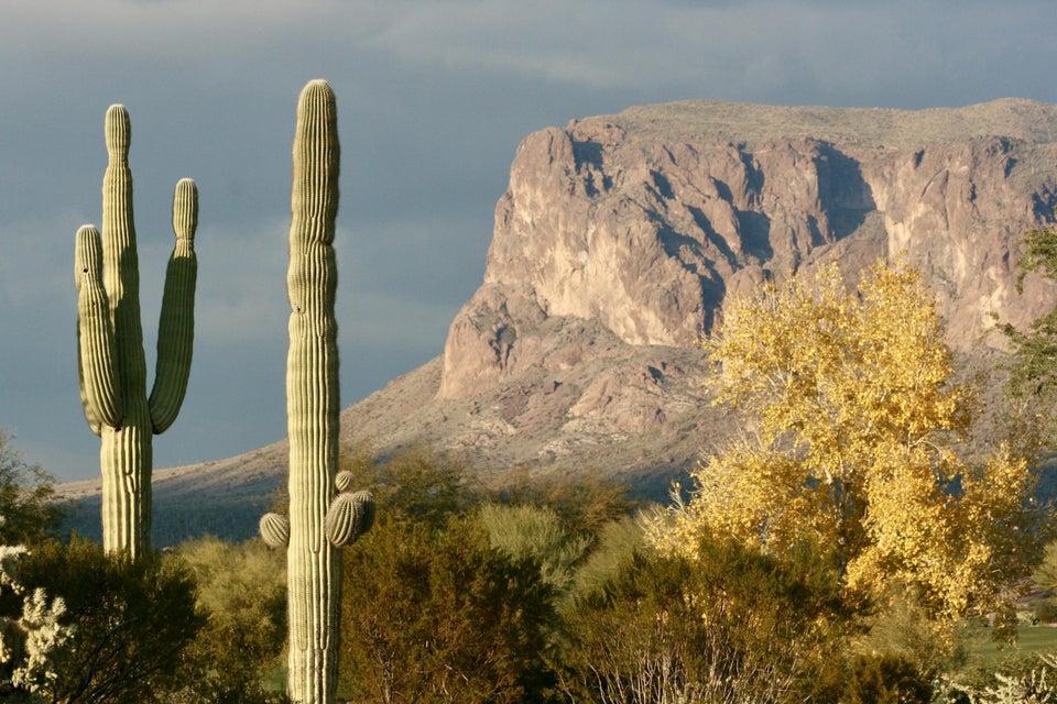 8702 E QUARTZ MOUNTAIN Drive Lot 30, Gold Canyon, AZ 85118