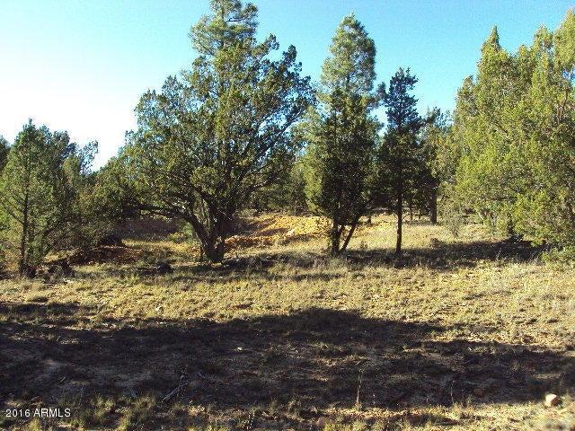2960 Tamarisk Trail, Heber, AZ 85928