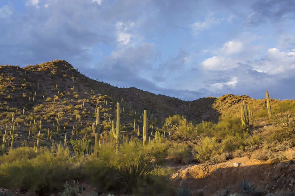 44019 N COTTONWOOD CANYON Road Cave Creek, AZ 85331 - MLS #: 5516541