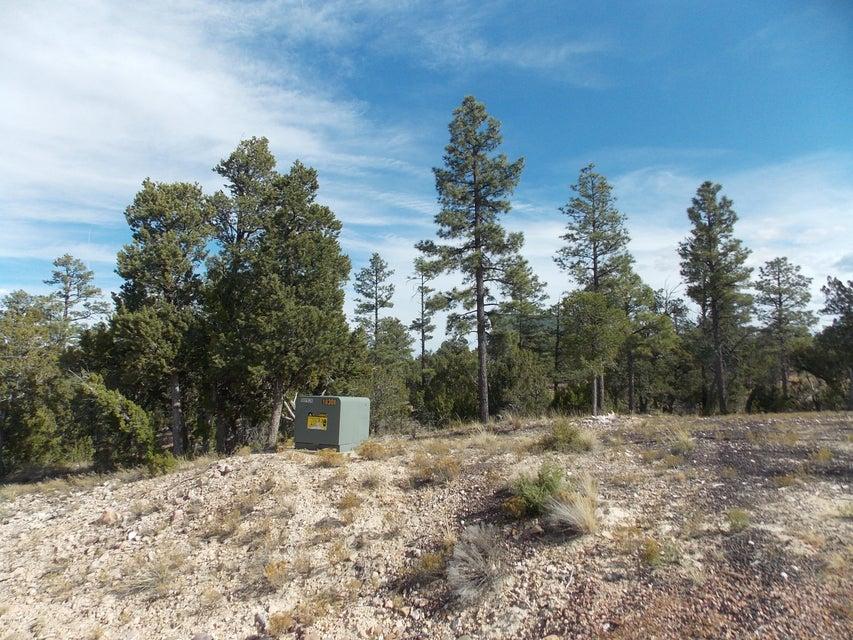1863 Tenney Lane Lot 070, Heber, AZ 85928