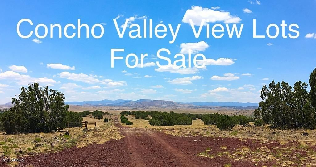 XX Miami Lane Lot 1, Concho, AZ 85924