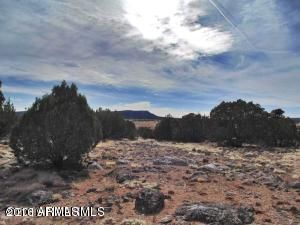 Lot 1559 Fort Rock Road, Seligman, AZ 86337