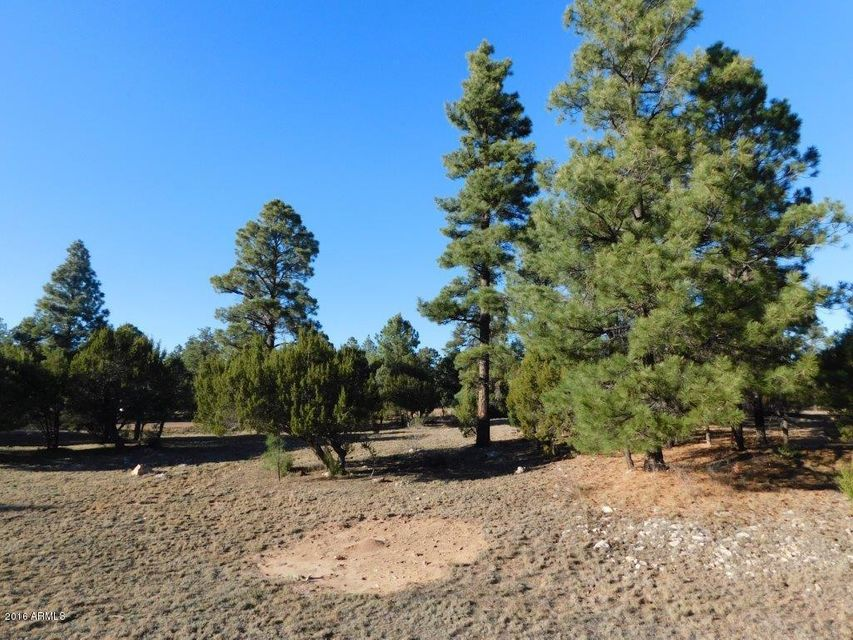 2220 MEADOW Trail Overgaard, AZ 85933 - MLS #: 5524843
