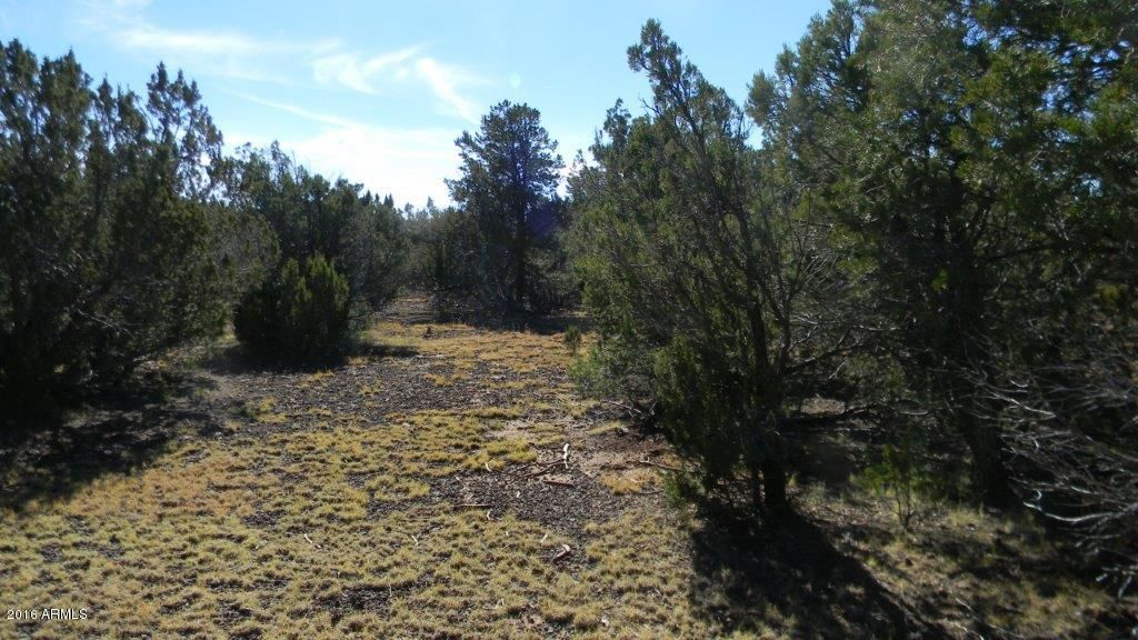 AC ROAD 3075 Vernon, AZ 85940 - MLS #: 5526223