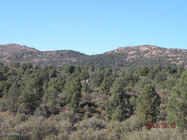 011Y Buckhorn Circle, Peeples Valley, AZ 86332