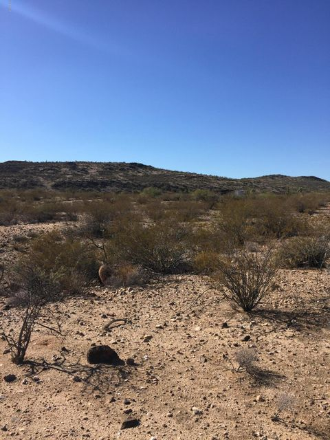 OFF W Coyote Gulch Road, Wickenburg, AZ 85390
