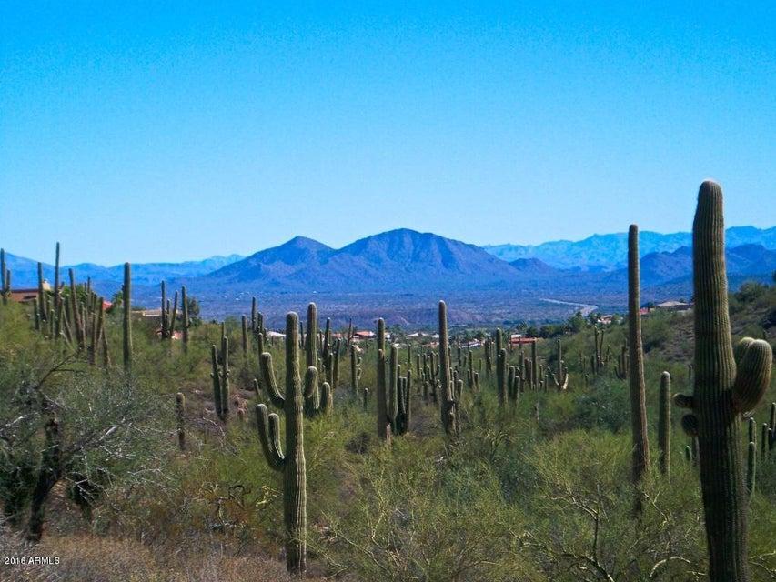 16210 E SAWIK Circle, Fountain Hills, AZ 85268