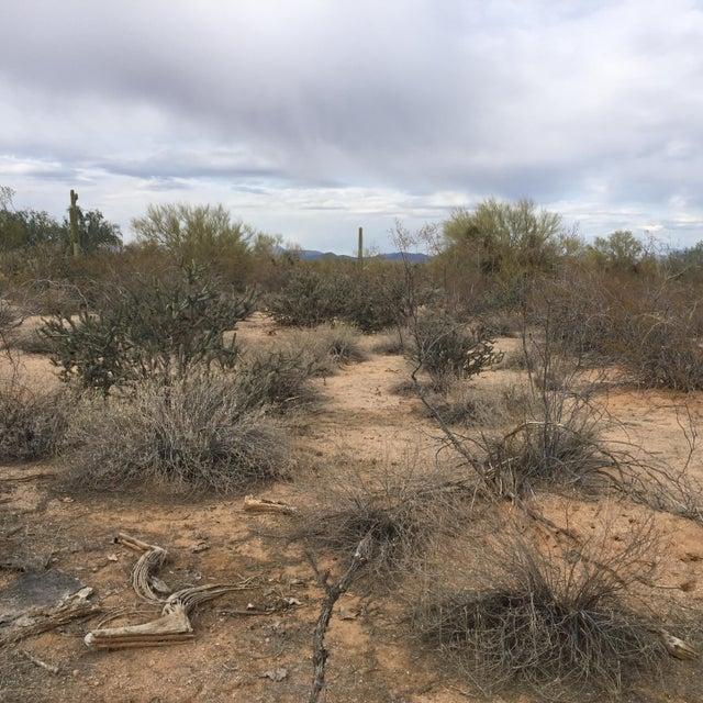 159th Street, Scottsdale, AZ 85262