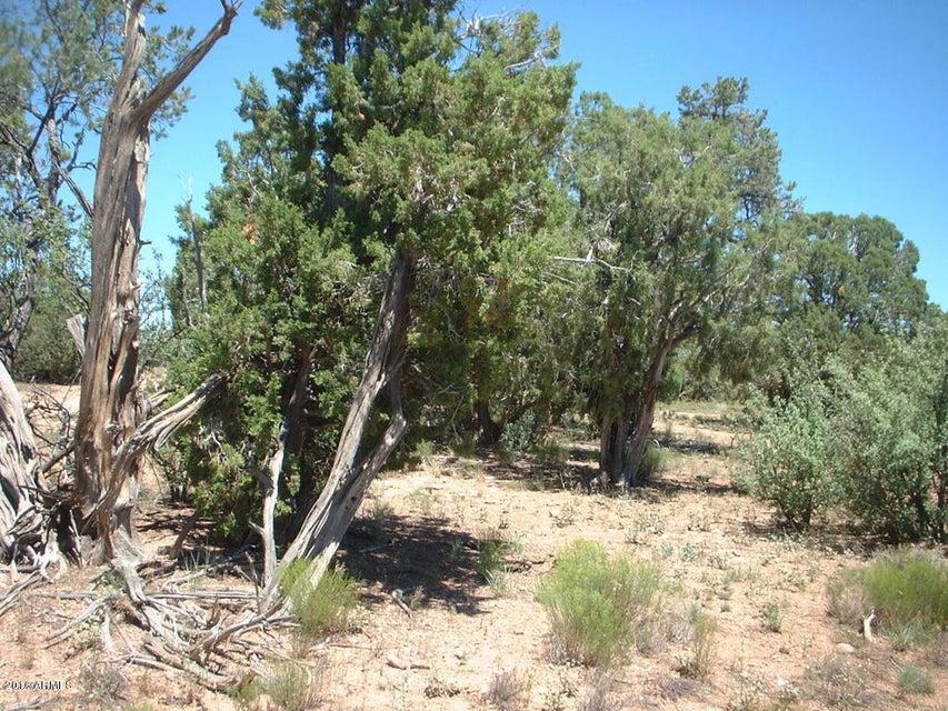 N Hyde Park Road Lot 109, Seligman, AZ 86337