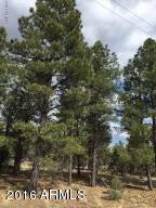 6473 Mogollon Trail Lot 39, Happy Jack, AZ 86024