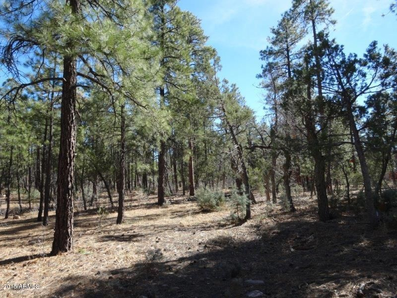 1090 W SADLER Lane Lakeside, AZ 85929 - MLS #: 5544519