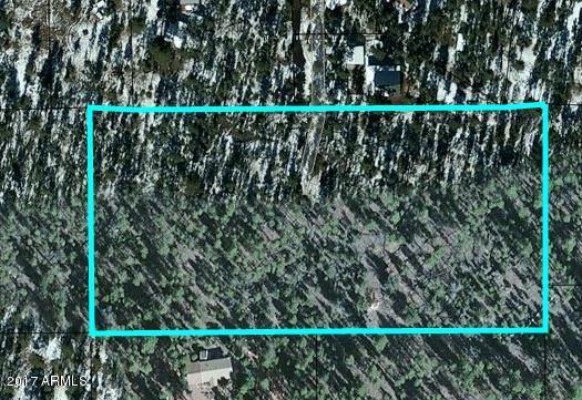 TBD PENROD Lane Overgaard, AZ 85933 - MLS #: 5544609