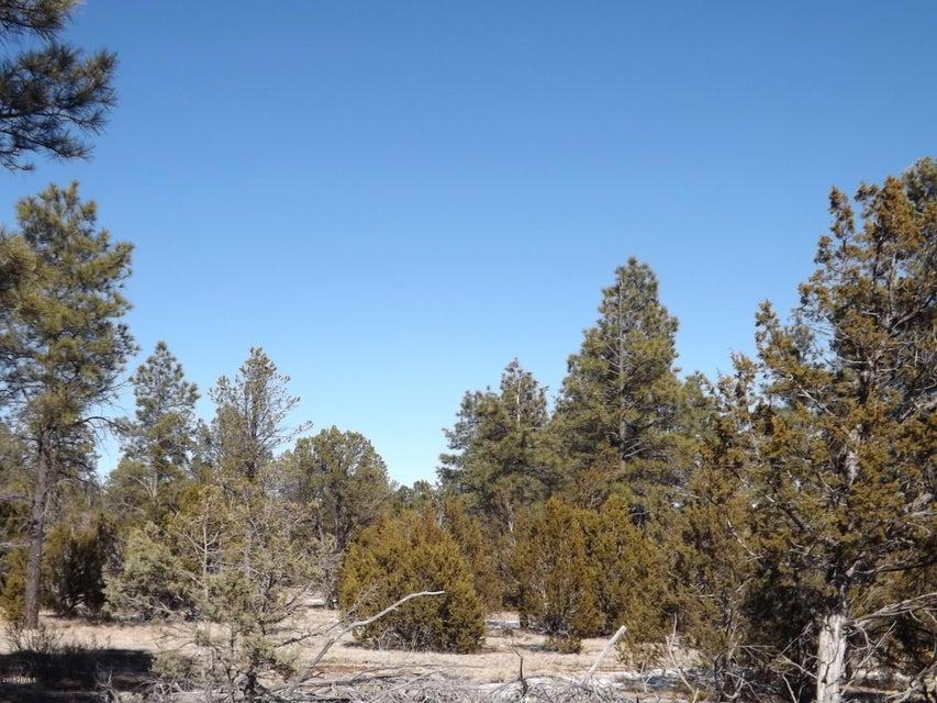 0 Parcel 13 Homestead Drive Overgaard, AZ 85933 - MLS #: 5555506