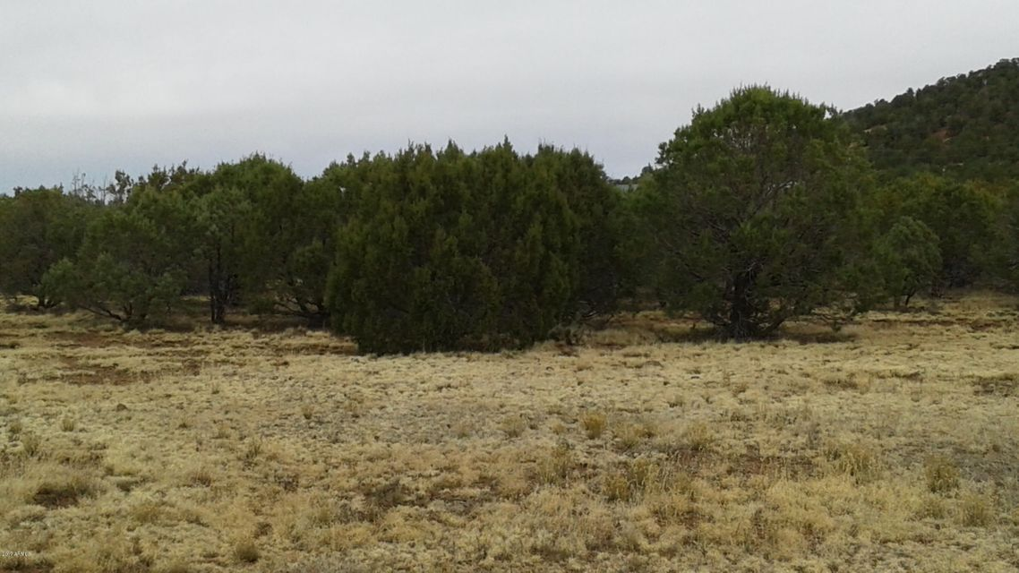 028H ACR 3555 (2 Acres) Parcel 1 -- Lot 028H TBD, Vernon, AZ 85940